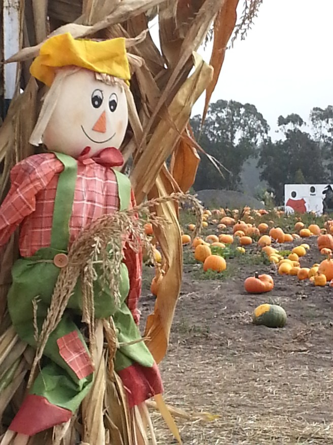 October Scarecrow by www.southocbeaches.com