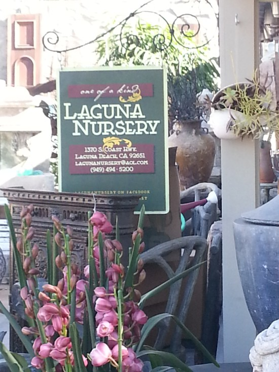Laguna Nursery by southocbeaches.com