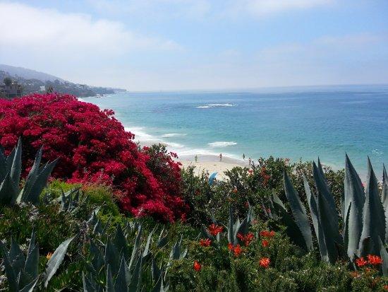 Laguna Coast by southocbeaches.com