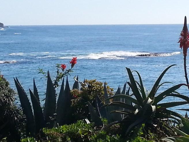 Laguna Beach California by SouthOCBeaches.com