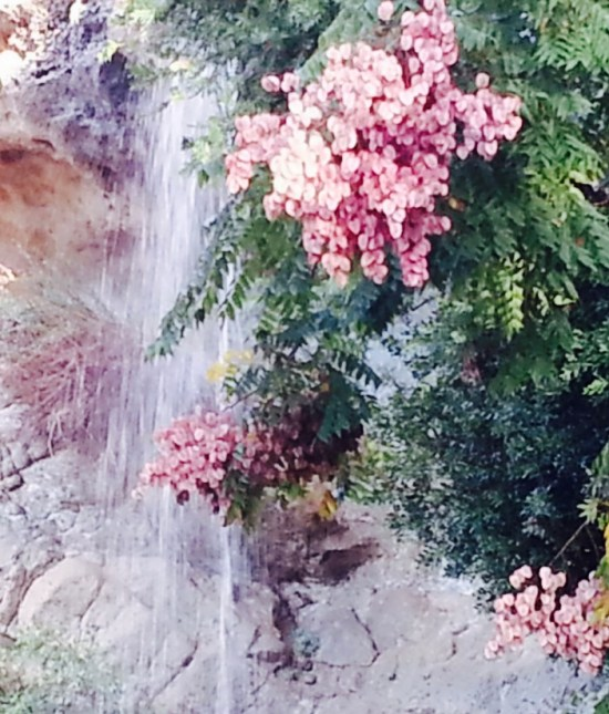 dana-point-waterfall-by-southocbeaches-com