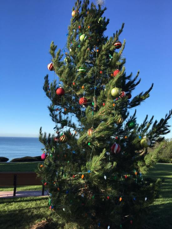 Capo Beach Holiday Tree Courtesy of Facebook.com/CapoCares
