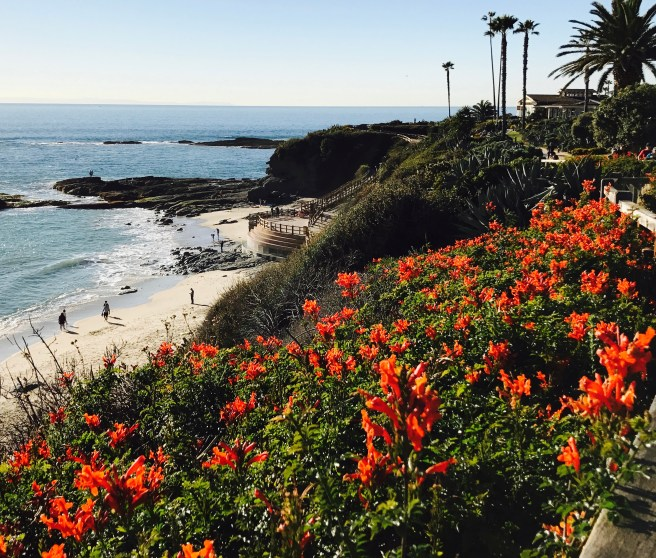 Laguna Beach By SouthOCBeaches.com