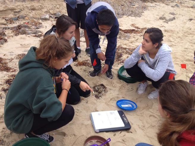 Crystal Cove Field Science Saturday Courtesy of CrystalCove.org