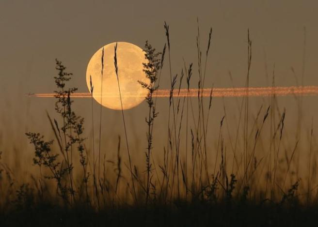 Harvest Moon Courtesy of Pixabay at Almanac.com
