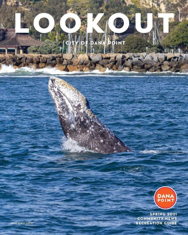 Dana Point Lookout Magazine Spring 2021 with Craig Dewitt Cover Photo Courtesy of The City of Dana Point California
