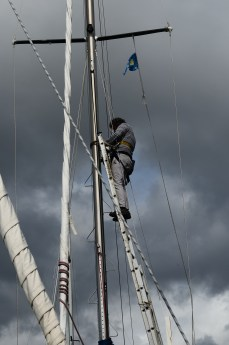 Mast steps are a great invention, but a pain in the arse... arms...legs... stomach ...back ...etc to install