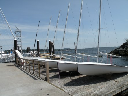Sailing school dinghy's.