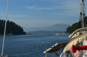 The answer to make Bamfield is one of our favourite place to anchored.