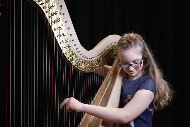 Heather Stark - Harp