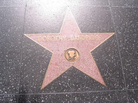 dd-hollywood-star