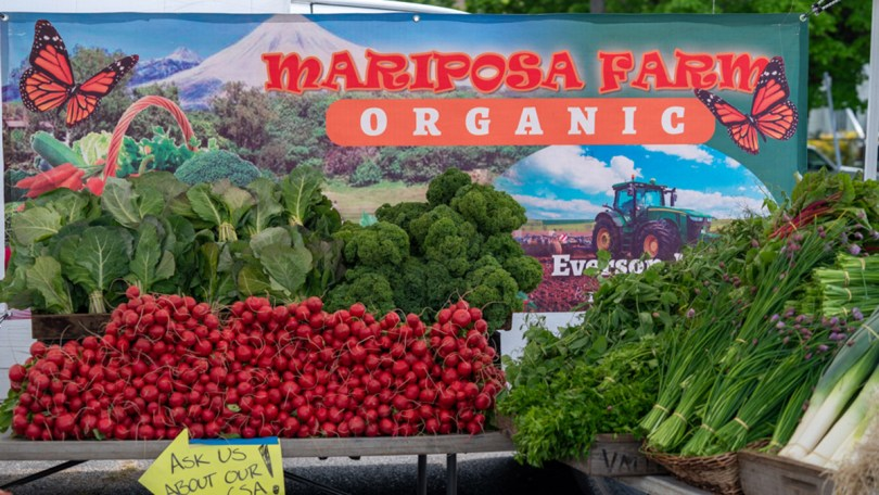 Mariposa Farm's offerings of fresh greens and other vegetables at the Columbia City Farmers Market.