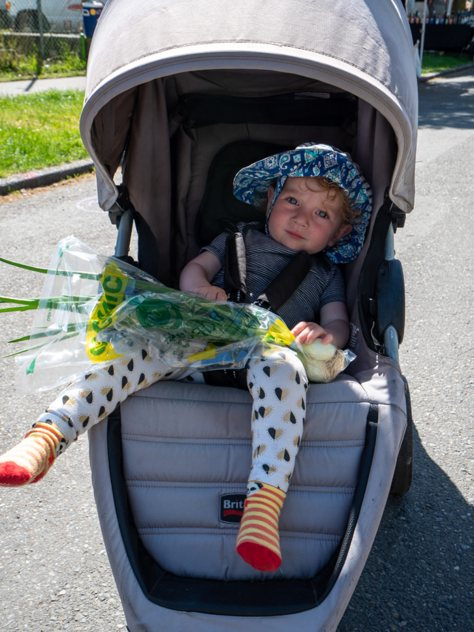 A baby holds their recent purchase of green onions from a farm vendor at the Columbia City Farmers Market.