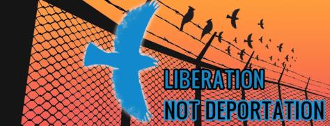 Logo of the Liberation Not Deportation Coalition.