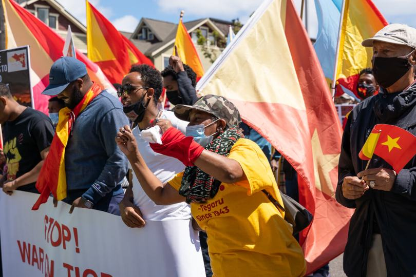 Protestors chanted and held up banners and Tigray flags as they marched.