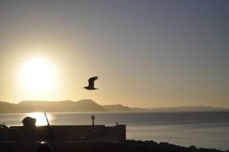 Sunrise - Lyme Regis, UK