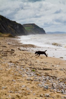 Charmouth beach in Dorset
