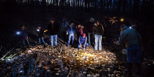 Join Wildlands Trust Volunteer Rob MacDonald and Stewardship Manager Erik  Boyer for a guided night hike at Striar Conservancy in Halifax. 6d426dd84