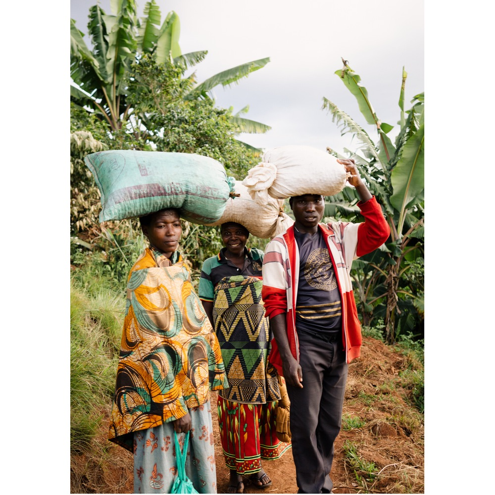 Photo of farmers delivering coffee to Gatakuza Wet Mill in Burundi Ngozi Region
