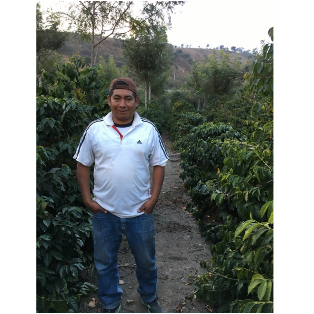 Byron Orizabal manager of el potrero farm for Zelcafé in Antigua guatemala
