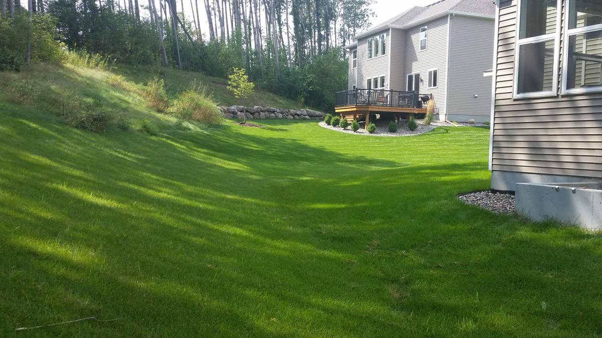 No-Mow Forest Backyard in Inver Grove Heights | Southview ... on No Mow Backyard Ideas id=55363