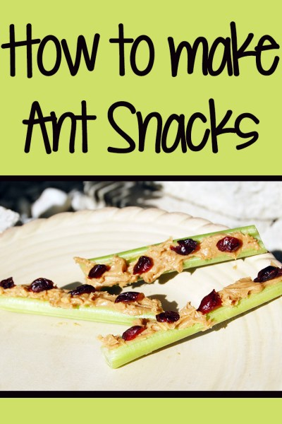 How to make Ant Snacks