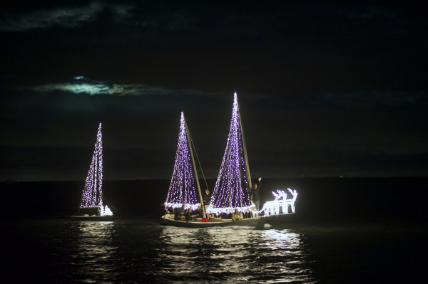 Santa's Dolphin and Wildlife Cruise in Fort Myers