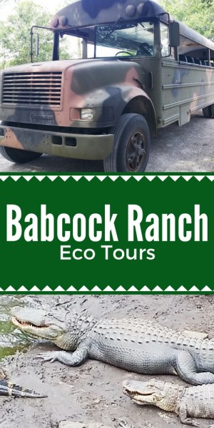 Babcock Ranch Eco Tours