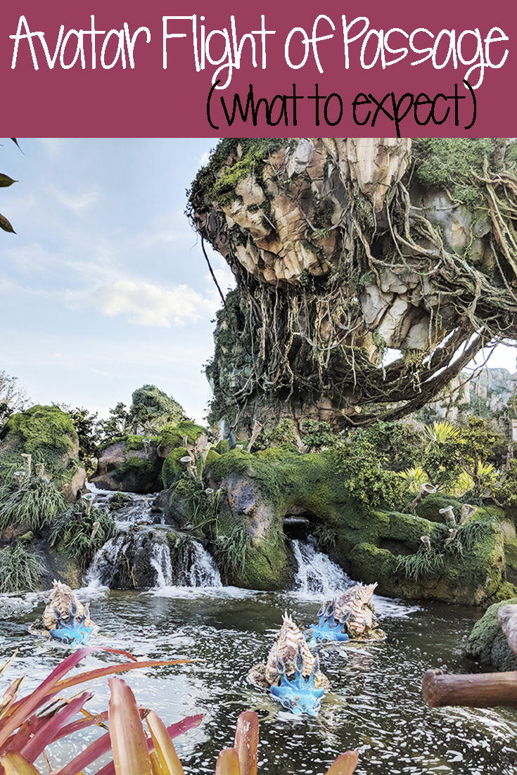 Avatar Flight of Passage: What to Expect