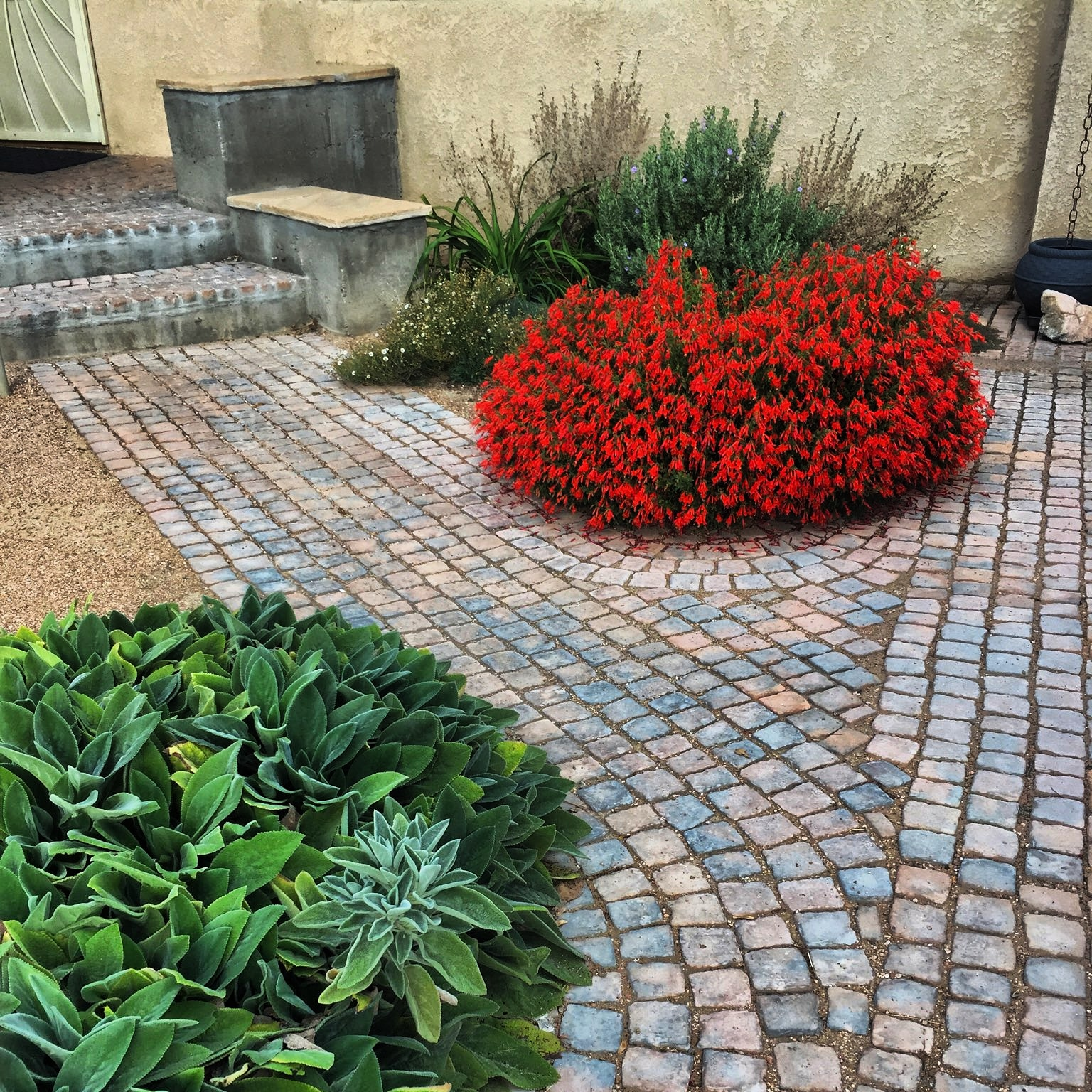 Landscape design albuquerque paver path patio xeriscape
