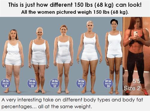 vetpercentage-voorbeelden