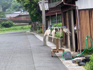 伊根町泊海水浴場の清掃