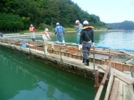 宋徳建設 海洋工事 重要港湾舞鶴港 港湾統合補助工事