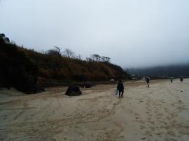 宋徳建設 海岸清掃