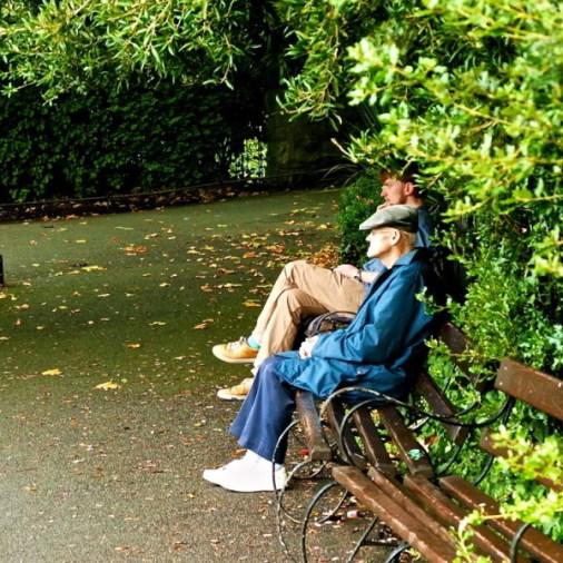 St. Stephen's Green Dublin bench