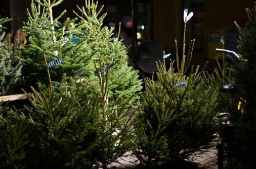 sweden stockhokm christmas tree