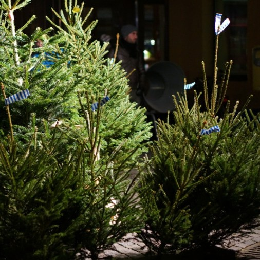 Christmas Tree Sweden: Stockholm Gamla Stan Christmas Market Review