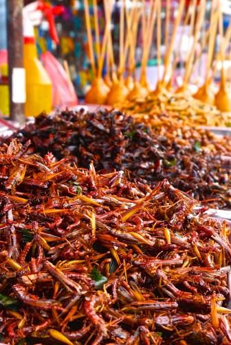 Chatuchak Market JJ Market Bangkok Vendor Street Thai Food Crickets Thailand