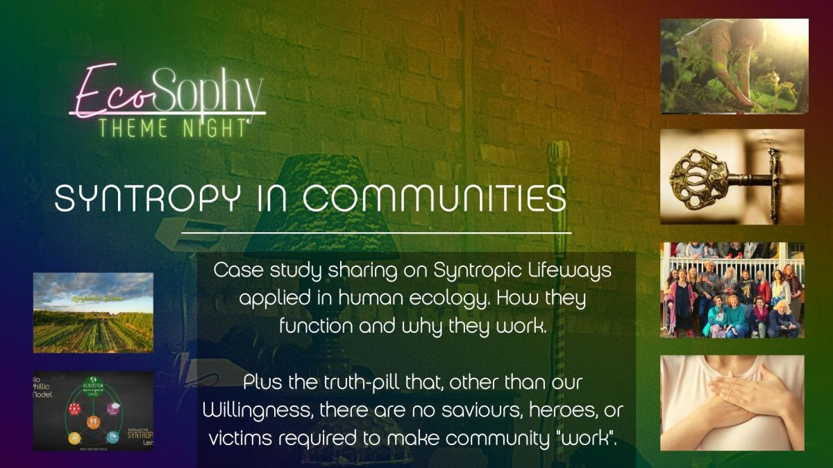 Syntropy in Communities, a case study