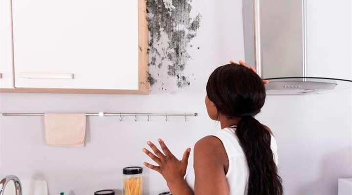 Infiltração no apartamento alugado: tudo o que você precisa saber