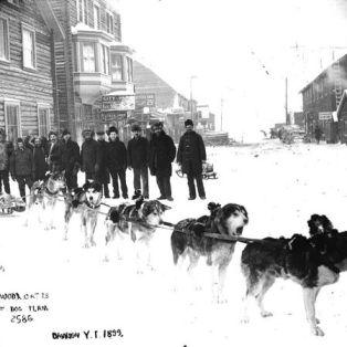 A dog team in Dawson in 1899