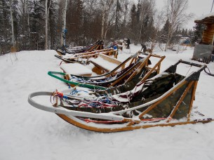 Sleds at the ready