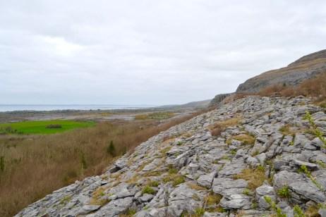The Burren, quite a landscape