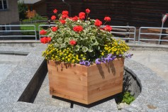 A flower box in town