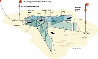 A diagram of a trapnet