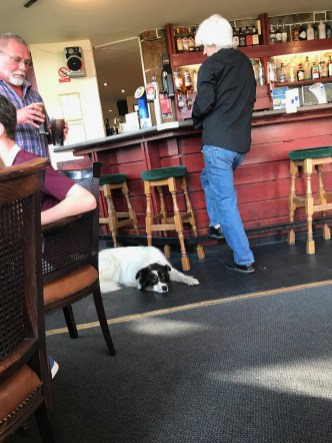 What's a pub without a resident dog?