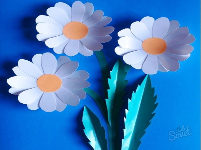 Цветы из цветной бумаги для открыток, открытку мая