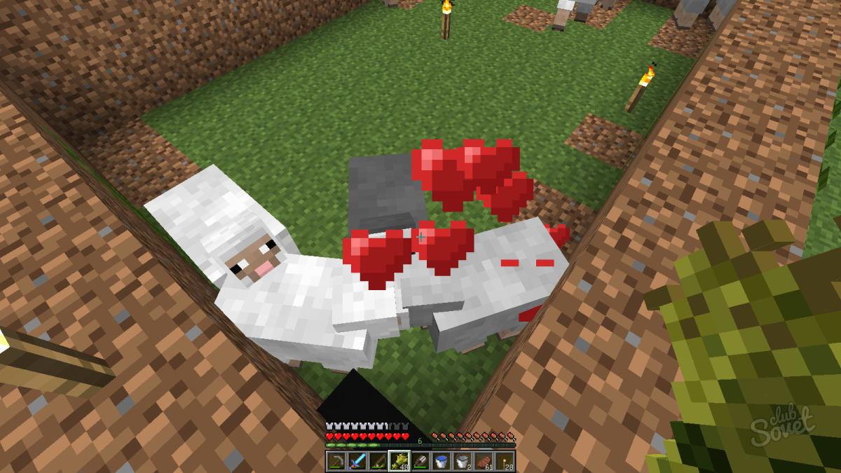 что едят овечки в майнкрафте #2