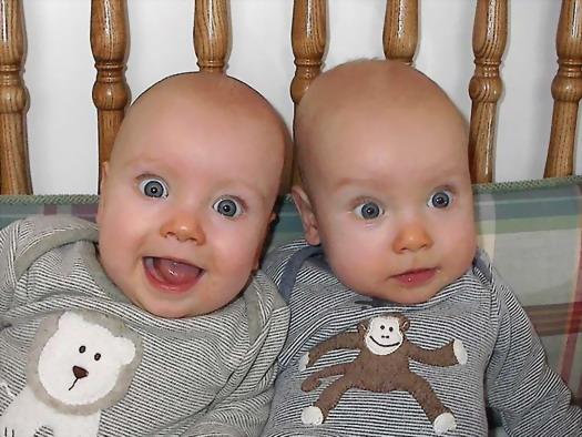 Картинки по запросу близнецы