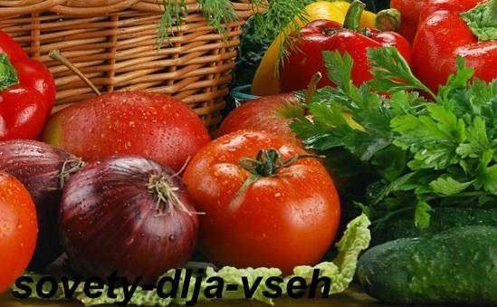Правильное питание для поддержания иммунитета